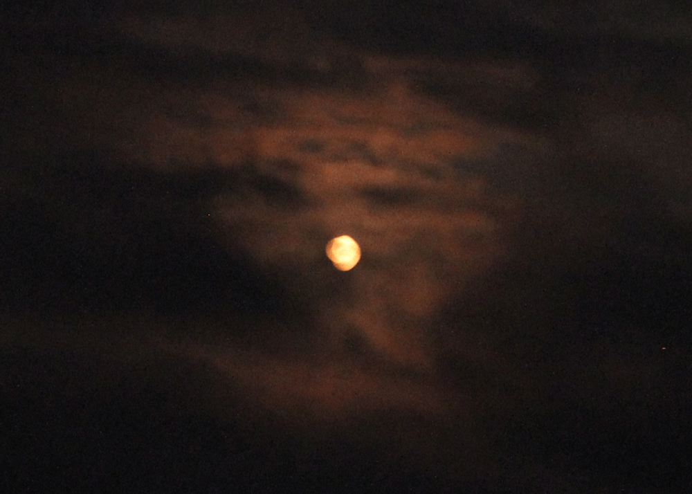 Photo of Blood Moon
