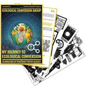 product image of the ecological conversion group examination of ecological conscience poster activity set